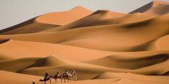 أكبر صحراء في العالم
