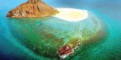 أكبر جزيرة في المملكة العربية السعودية