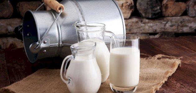 ما هو الحليب الخام
